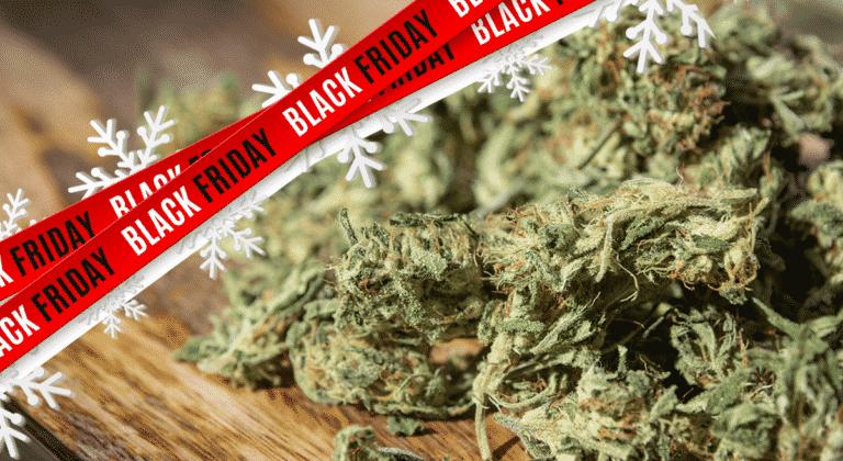 Best hemp flower black friday sale